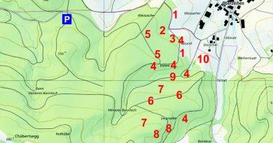 Sein und Schein im Staatswald Densbüren – Ausflugtipp und Fazit
