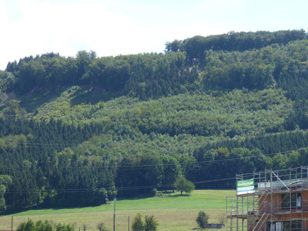Flächenhiebe oberhalb Frick, kantonaler Kernraum für Landschaftsentwicklung, 11.08.2016